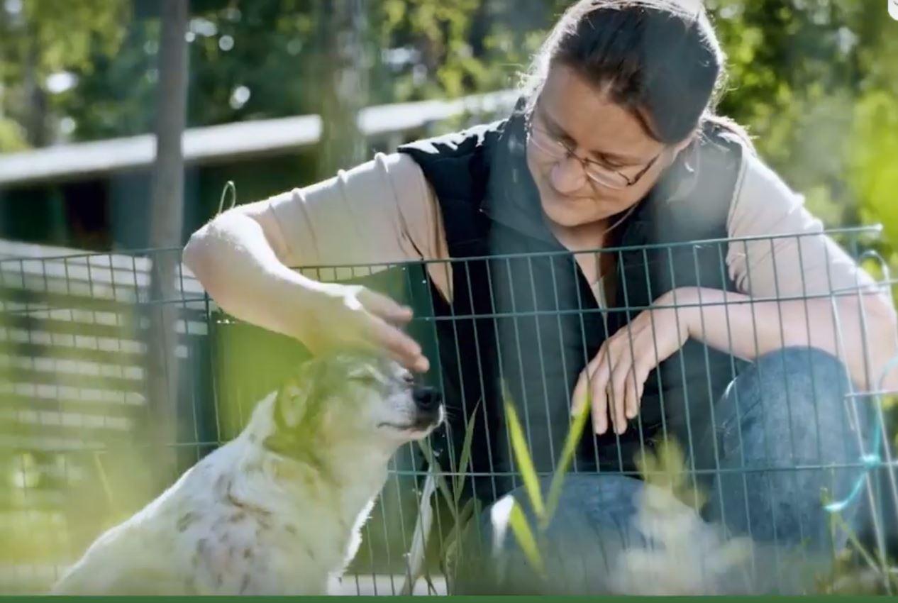 Tierschutzliga
