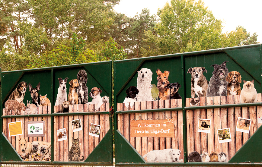 BISSELL Pet Foundation e TIERSCHUTZLIGA